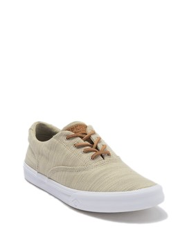 Striper Ii Baja Sneaker by Sperry