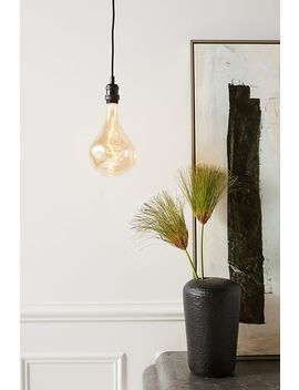 Holden Bulb Pendant by Anthropologie