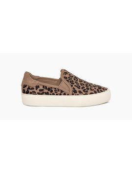 Jass Exotic by Ugg