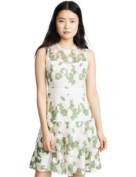 Roseia Dress by Shoshanna