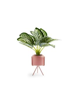 Pink Faux Plant Pot Stand by Primark