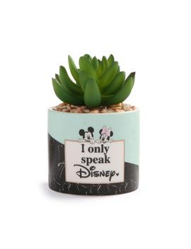 Disney Faux Plant by Primark