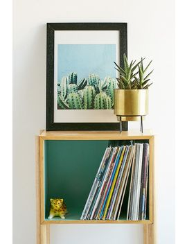 83 Oranges Cactus And Teal Wall Art Print by 83 Oranges