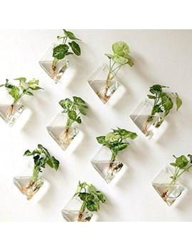 Natural Wall Hanging Plant Terrarium Glass Planter Pots Diamond Baskets On G8 S6 by Unbranded
