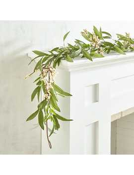 Faux Olive Leaves & Berries 6' Garland by Pier1 Imports