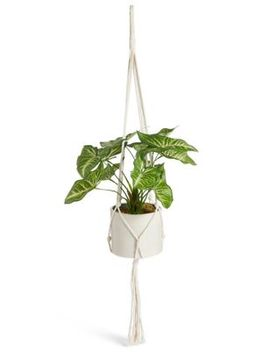 Hanging Lilypad Macrame Plant by Marks & Spencer