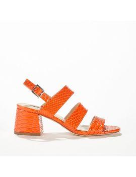 Sienna Orange 3 Strap Heeled Sandals by Miss Selfridge