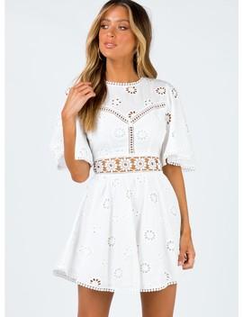 Daisy May Mini Dress by Princess Polly