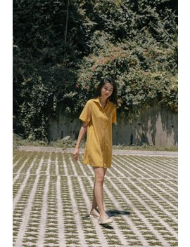 Go To Shirt Dress In Honey Yellow by Young Hungry Free