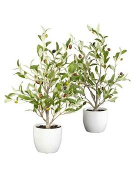 18 In. H Green Olive Silk Tree With Vase (Set Of 2) by Nearly Natural