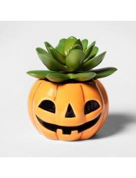 Pumpkin Halloween Succulent   Hyde & Eek! Boutique by Hyde & Eek! Boutique