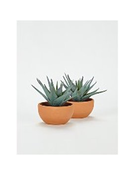 Artificial Succulents In Terracotta Pots 12cm    Set Of 2 by Asda