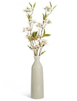 Cherry Blossom In Tall Ceramic by Marks & Spencer