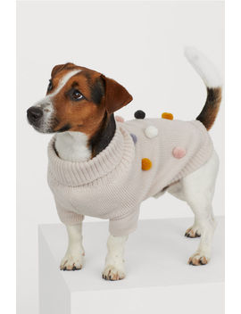 Dog Sweater With Pompoms by H&M