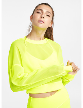 Sheer Knit Cropped Sweatshirt by Alo Yoga