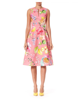 Sleeveless Floral Stretch Cotton Knee Length Dress by Carolina Herrera