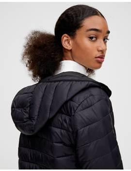 Basic Nylon Puffer Jacket by Pull & Bear