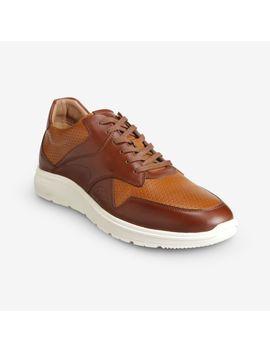 Osborn Sneaker by Allen Edmonds