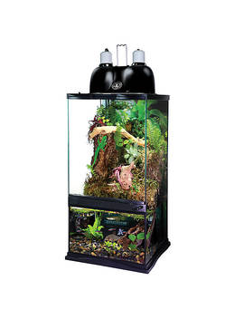 Zoo Med™ Paludarium Habitat Kit by Zoo Med