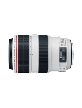 Ef 70 300mm F/4 5.6 L Is Usm by Canon