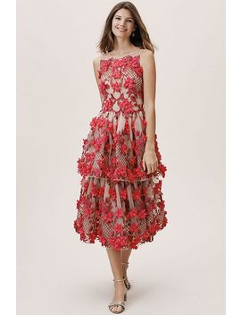 Adrie Dress by Marchesa Notte