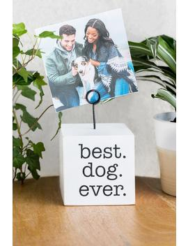 Best Dog Ever Photo Holder by Francesca's