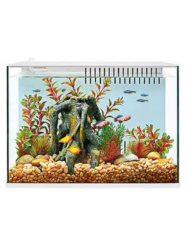 Top Fin® Engage™ 5 Gallon Aquarium by Top Fin