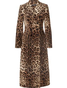 Leopard Print Double Breasted Cotton Blend Velvet Coat by Dolce & Gabbana