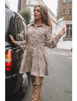 Dani Dyer Stone Leopard Print Skater Shirt Dress by In The Style