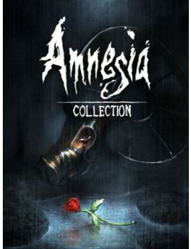 Amnesia Collection Steam Key Global by G2 A