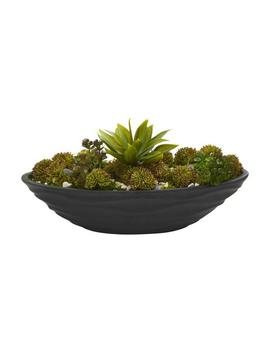 Indoor Agave & Succulent Garden Artificial Plant In Black Planter by Nearly Natural