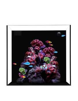 """Waterbox Cube 10 Gallon Aquarium, 13.8"""" L X 14.2"""" W X 13.8""""H Waterbox Cube 10 Gallon Aquarium, 13.8"""" L X 14.2"""" W X 13.8""""H by Waterbox"""
