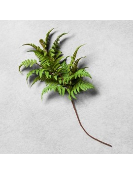 """<Span><Span>Faux Fern Stem   Hearth & Hand With Magnolia</Span></Span><Span Style=""""Position: Fixed; Visibility: Hidden; Top: 0px; Left: 0px;"""">…</Span> by Hearth & Hand With Magnolia…"""