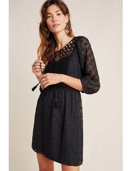 Heloise Lace Mini Dress by Daniel Rainn