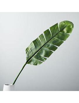 Faux Botanicals   Banana Leaf by West Elm