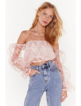 I'm A Big Sleever Organza Crop Top by Nasty Gal