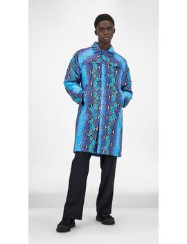 Blue Snake Gain Jacket by Daily Paper