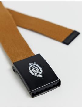 Dickies Orcutt Belt In Brown Duck by Dickies