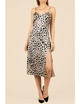 Leopard Slip Dress by Pretty Little Things, New Hampshire