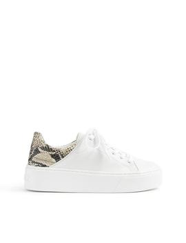 Tarim Sneaker by Schutz