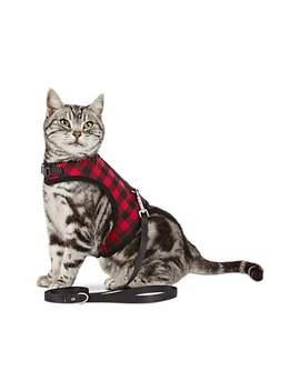 Bond & Co. Buffalo Check Cat Harness And Leash Set Bond & Co. Buffalo Check Cat Harness And Leash Set by Bond & Co