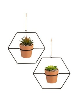 black-wire-hanging-succulents-in-terracotta-pot by b&m