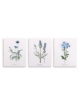 "8""x10""-3pc-lavender-botanical-drawing-canvas-art-lavender---patton-wall-decor by patton-wall-decor"