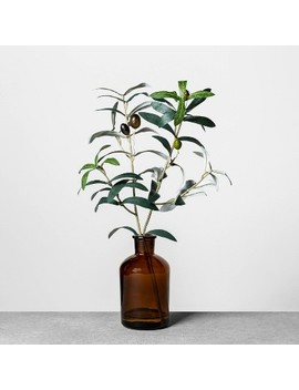 faux-amber-olive-branch-arrangement---hearth-&-hand-with-magnolia by shop-collections