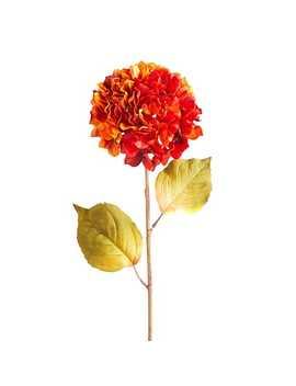 fall-orange-faux-hydrangea-stem by pier1-imports