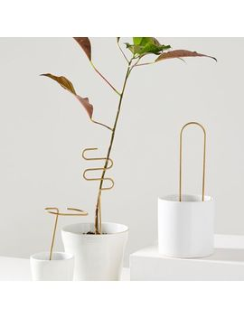 fruitsuper-plant-sticks-set by west-elm