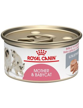 Royal Canin Mother & Babycat Ultra Soft Mousse In Sauce Wet Cat Food For New Kittens And Nursing Or Pregnant Mother Cats by Royal Canin