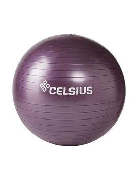 Celsius Fit Ball 65cm by Celsius