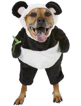 Frisco Walking Panda Dog & Cat Costume by Frisco