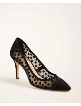 Shoptagr Petite Herringbone High Waist Wide Leg Pants By